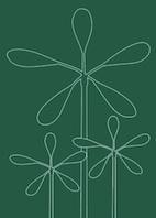 Großstadpflanzen dunkelgrün